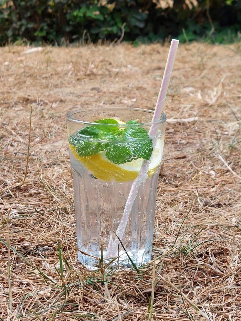 Zomerdrankje met tonic, citroen en munt