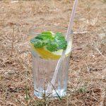 Fris zomerdrankje met tonic munt en citroen 2